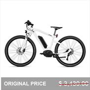 BMW Cruise E-Bike Frozen Brilliant White Metallic with Black Saddle