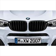 BMW M Performance Black Kidney Grille for X4