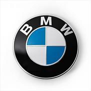 BMW Emblem Replacement