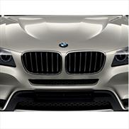 BMW Performance Black Kidney Grille for X1