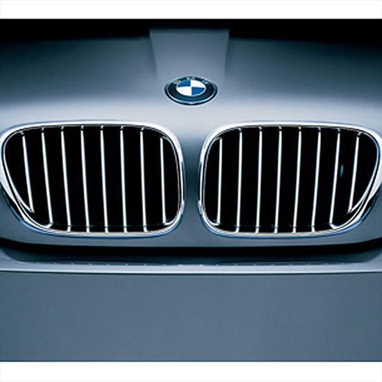 BMW Titanium Grille for X5