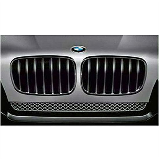BMW Performance Black Kidney Grille for X5