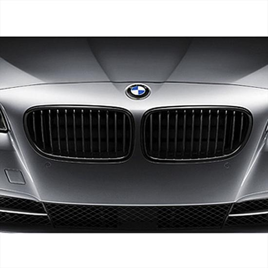 BMW M Performance Black Kidney Grille for 5 Series