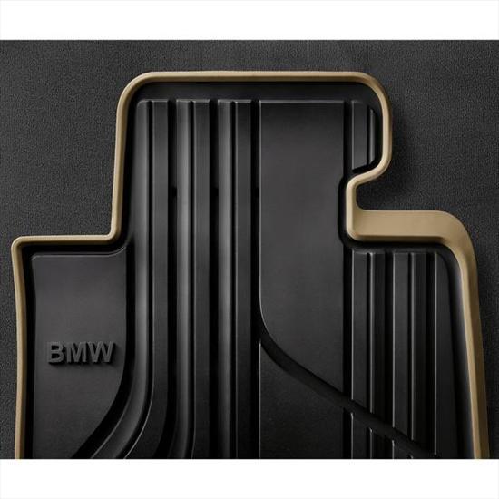 BMW All Weather Floor Mats - Modern Line
