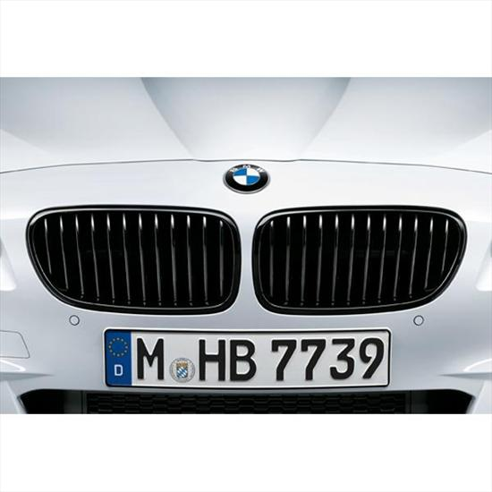 BMW M Performance Black Kidney Grilles for M5