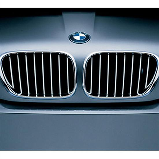 BMW Titanium Grille for X5