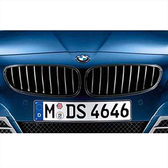 BMW Performance Black Kidney Grille for Z4
